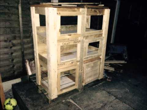 Building rabbit hutch from scratch