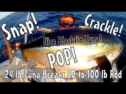WTF 24 Pound Blackfin Tuna Breaks 50 to 100 lb Rod
