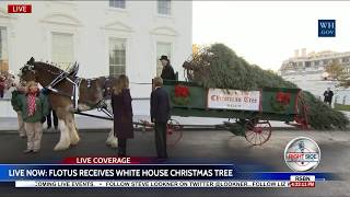 First Lady Melania Trump Receives the 2017 White House Christmas Tree 11/20/17