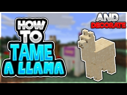 How to tame and decorate a llama in Minecraft Pocket Edition (Minecraft PE/Mcpe) 1.1 Beta