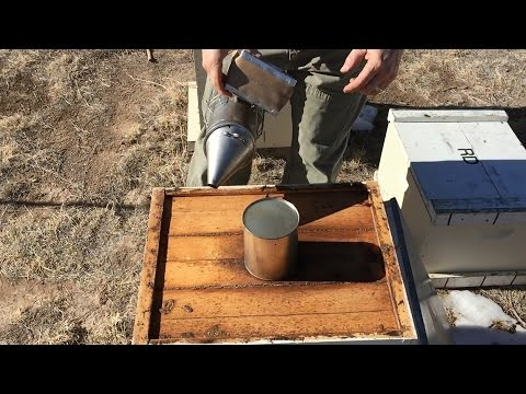 Feeding Your Bees - How to, What To, When to!