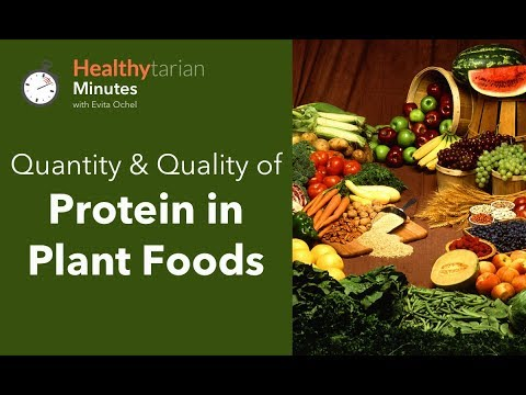 Quality & Quantity of Protein in Plant Foods (Healthytarian Minutes ep. 45)