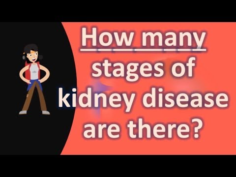 How many stages of kidney disease are there ?
