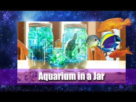 How to Make an AQUARIUM IN A JAR (a fun Pinterest Craft for all Ages) - @dramaticparrot