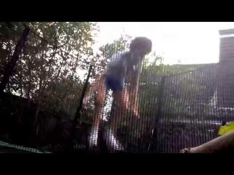Fun flips on the trampoline