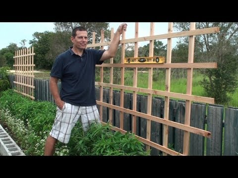 Building a Trellis for our raised bed