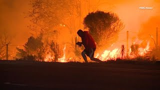 Hero Saves Rabbit from California Wildfires