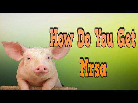 How Do You Get Mrsa, Signs Of Mrsa, Mrsa In Lungs, Mrsa On Skin, Colonized Mrsa, Living With Mrsa