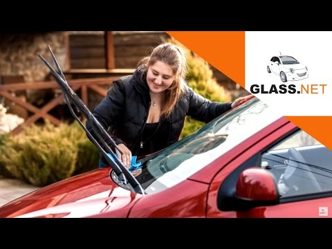 Windshield Maintenance Tips to Prevent Heat and Sun Damage