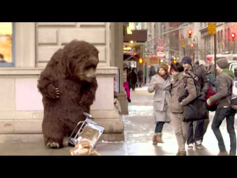 Bear in NYC Prank!