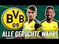 Borussia Dortmund Transfers: Wenn alle BVB-Gerüchte wahr wären!