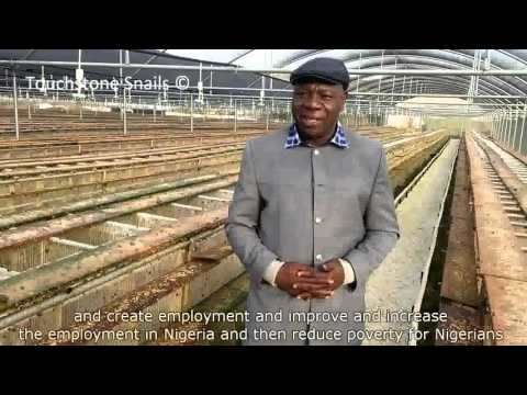Snail Farming Franchise Opportunities - Touchstone Snail Technologies LTD