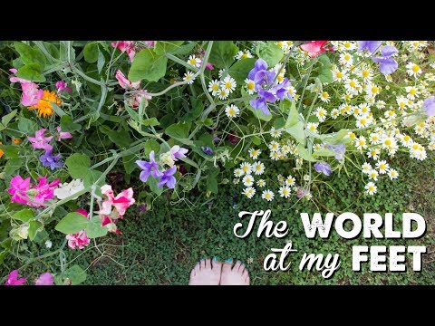 The World at My Feet | A Thousand Words
