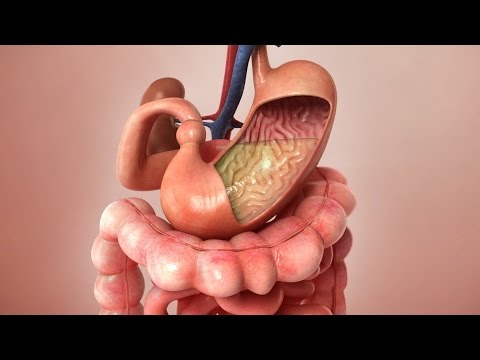 Aspirin Journey through the body - 3D Animation