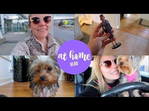 Going Home | Flight Attendant Vlog