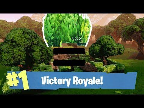 Bush = Win?!?  - Fornite