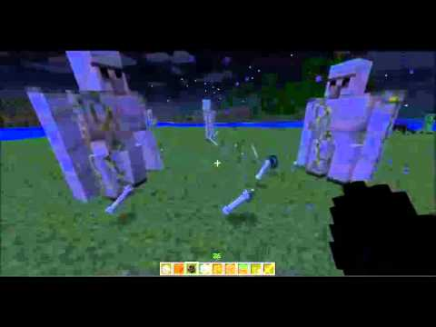 How To Make BodyGuard In Minecraft