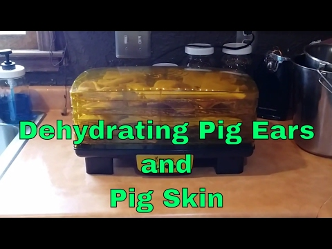 Dehydrating Pig Ears & Pig Skin