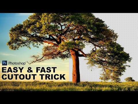How to Cut-Out a Tree Using Calculations in Photoshop - Easy and Fast Background Remove Technique