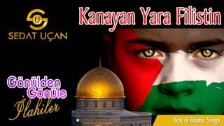 Sedat Uçan - Kanayan Yara Filistin | İnsanlik Ağliyor Şu Filistinde | ilahi