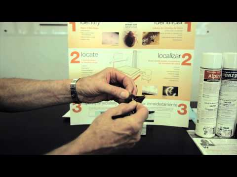 How to Get Rid of Bed Bugs: Pest Control Supplies for Detection and Bed Bugs Removal