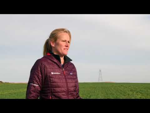 Soil Health Practices for Managing Sandy Soils