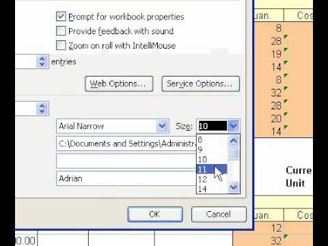 Microsoft Office Excel 2003 Change the default font and font size used in new workbooks
