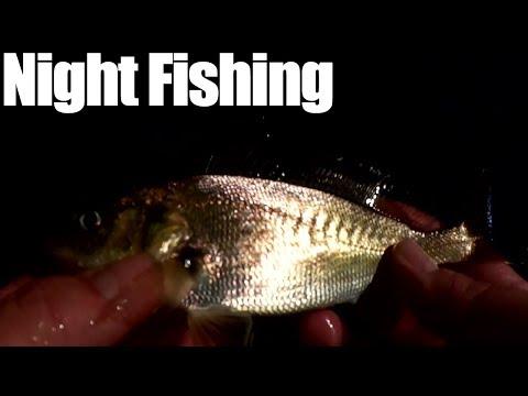 Night Fishing In the Rain - Fishing With Shrimp at Bon Secour River