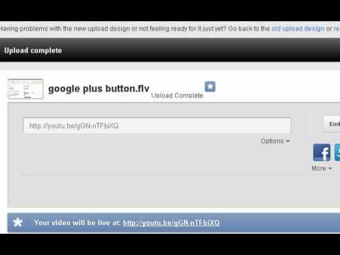 embedd youtube video.flv