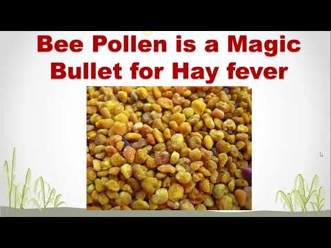 Bee Pollen as a Magic Bullet for Hay Fever