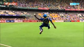 Sri Lankan Cricket Team - CB Series Tribute