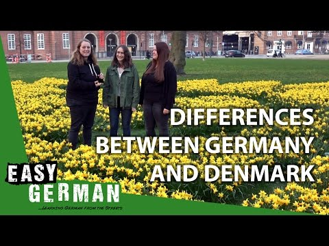 Differences between Germany and Denmark | Easy German 190