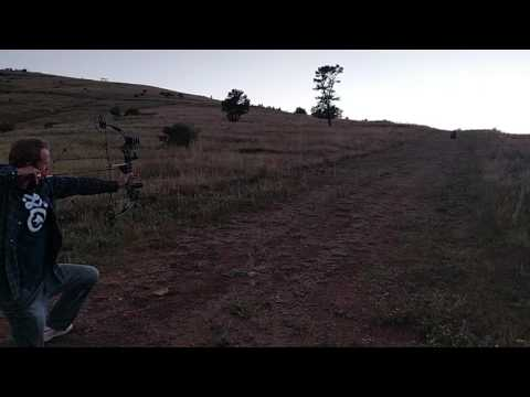Lighted nocks - LED nock at dusk 50yds