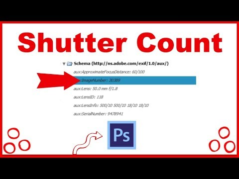 Shutter Count in Photoshop cc