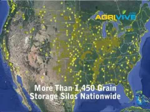 Buy Bulk Grains Wholesale, Bulk Rye Grain, Bulk Wheat Grain, Bulk Malted Grain, Buying Whole Grains
