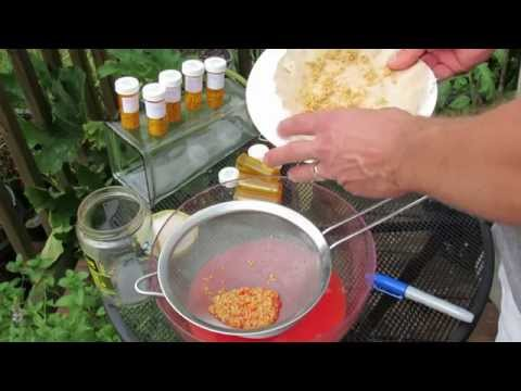 Collecting Tomato Seeds Part 2: Cleaning, Drying & Storing Seeds - TRG 2014
