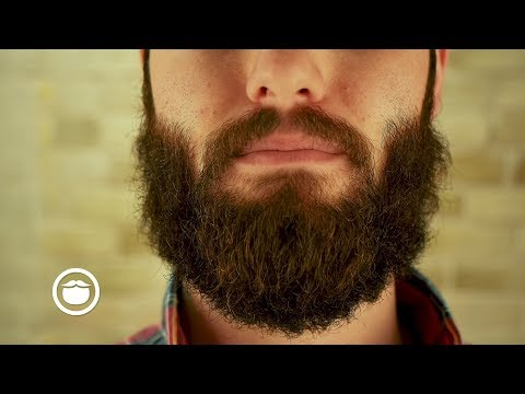 What to Do About Mustache Gaps | YEARD WEEK 12