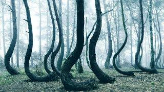 10 ყველაზე იდუმალი და საიდუმლოებით მოცული ადგილი დედამიწაზე