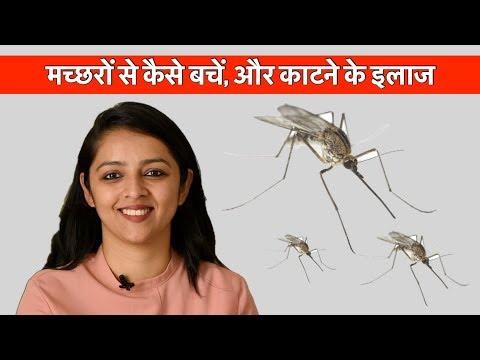मच्छरों से कैसे बचें, और काटने के इलाज || HOW TO PROTECT FROM MOSQUITOS?