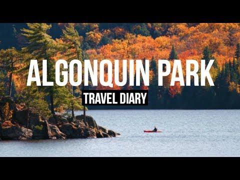 ALGONQUIN PARK | Travel Diary