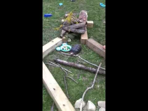 Rainforest shelter for Toodles