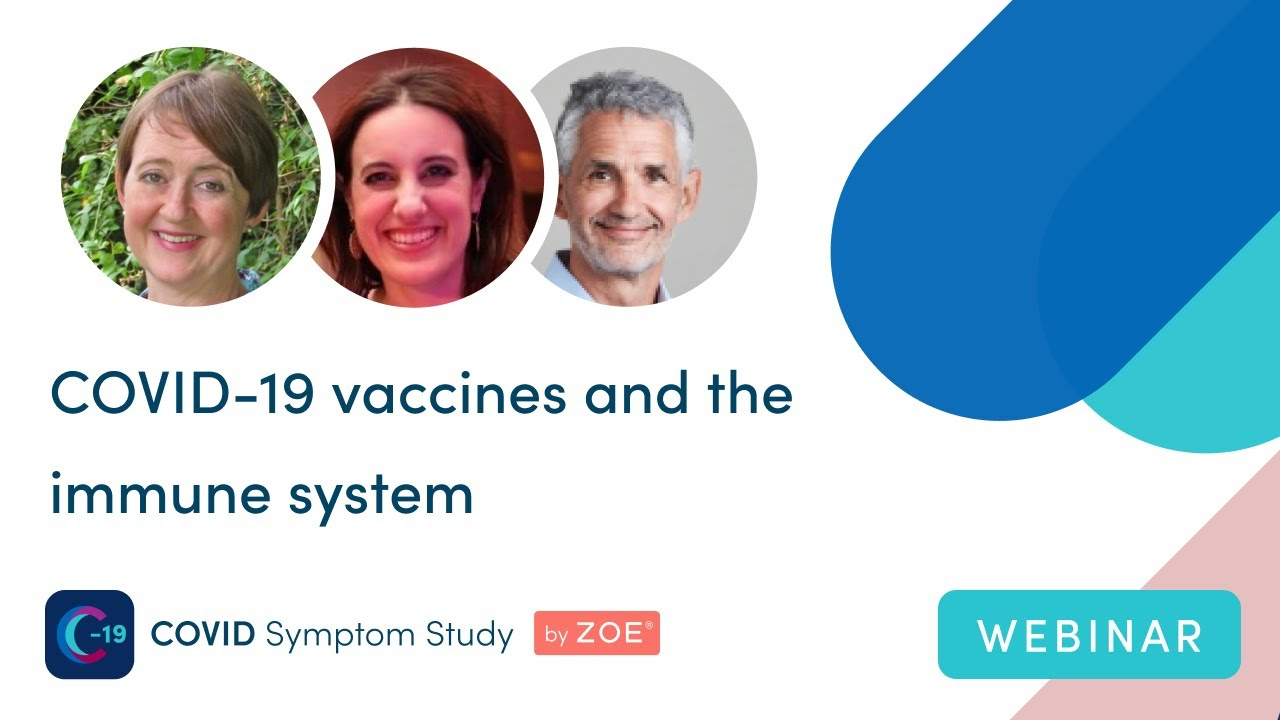 COVID vaccines and the immune system