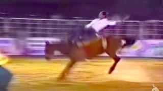 João Antonio Borges Vs. Cavalo Schmidt - Bariri/sp 1990
