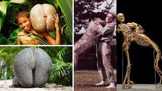 30 Cosas que no sabías hace 5 minutos [24]