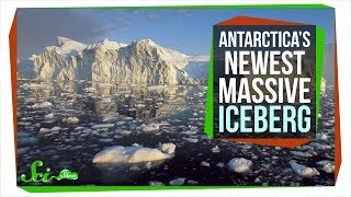 Should You Worry About Antarctica