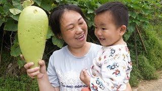媳婦帶3個孩子去摘菜,力氣還挺大,壹手拿葫蘆瓜壹手抱孩子