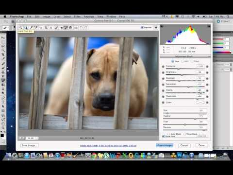 Tutorial: Basic Photoshop CS5 Editing Jpeg + Raw Files