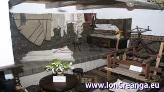 Ion Creanga - Biografie