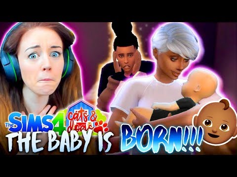 🍼👶🏽GIRL OR BOY!? 👶🏽🍼(The Sims 4 CATS & DOGS #18 🏖)