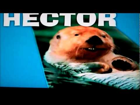 Frontier Airline Commercial with Talking Animal Planes